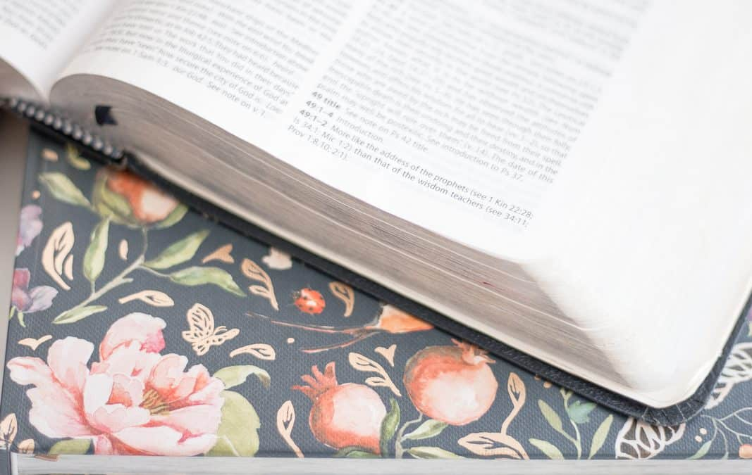 HOW TO LEAD A WOMEN'S BIBLE STUDY IN YOUR HOME
